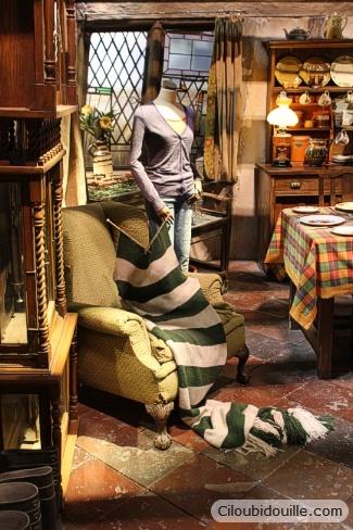 studios harry potter maison des Weasley