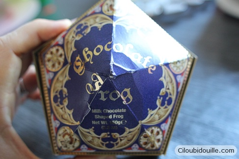 chocogrenouille studios harry potter