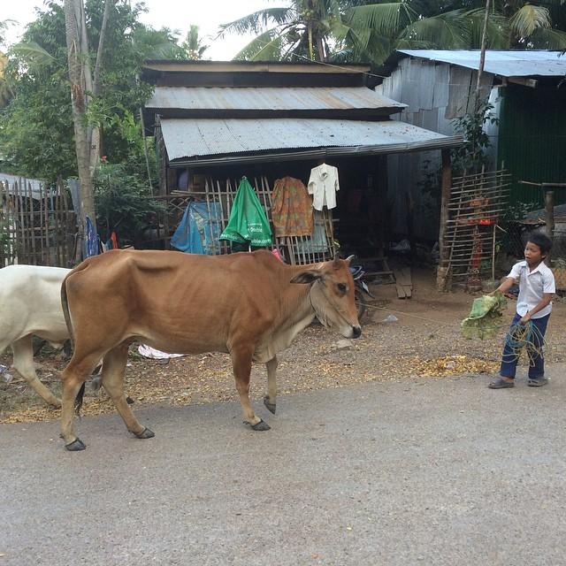 Scène de vie à Battambang #cambodge