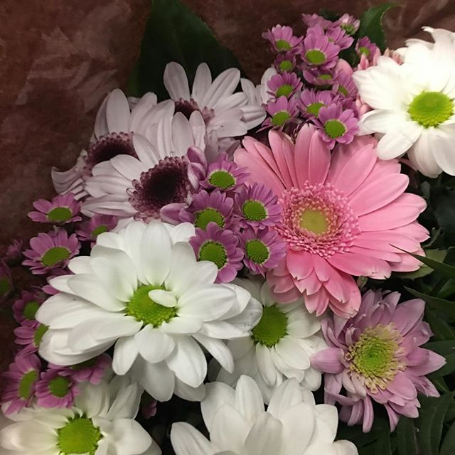 Les fleurs sont les câlins des amis.