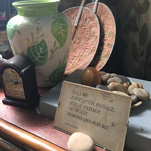 Chez ma grand-mère, jardinière émérite #lavieestunjardin