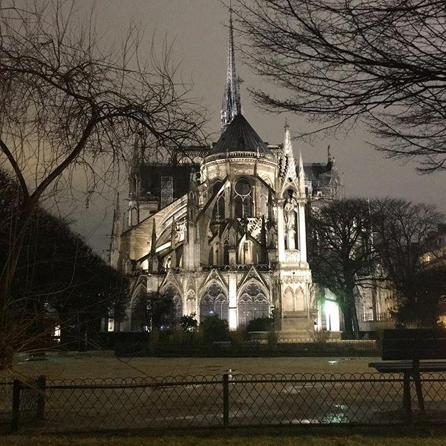 Notre Dame de Paris de Nuit et de Dos