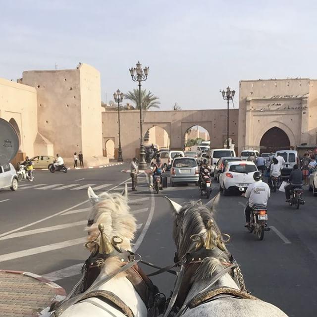 Un petit tour de calèche ? #marrakech #ciloubidouilleauMaroc