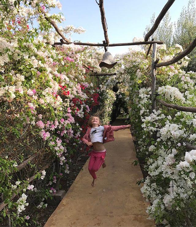 Allée fleurie de notre camping à Marrakech