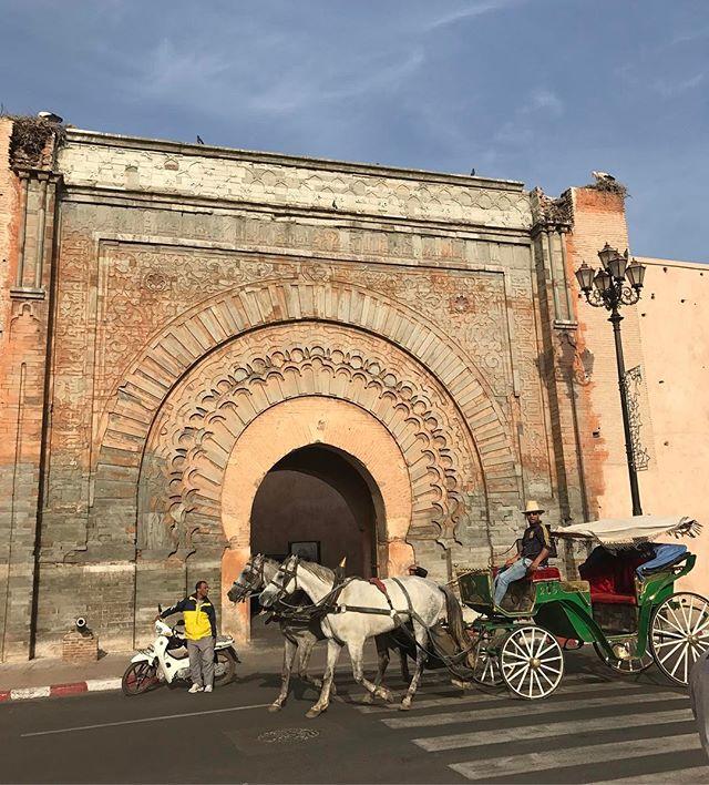 La plus vieille porte de Marrakech (et ses cigognes) #marrakech #ciloubidouilleauMaroc