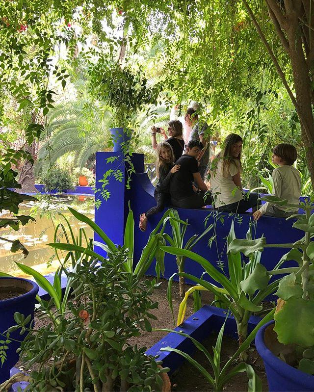 On traque les points d'ombre et les jolies vues. #jardindemajorelle #marrakech #ciloubidouilleauMaroc