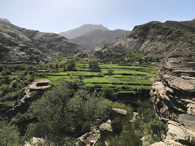La région est caillouteuse mais partout des oasis verdoyantes créées par les hommes qui suivent l'eau... #montagnesAtlas #ciloubidouilleauMaroc #atlas