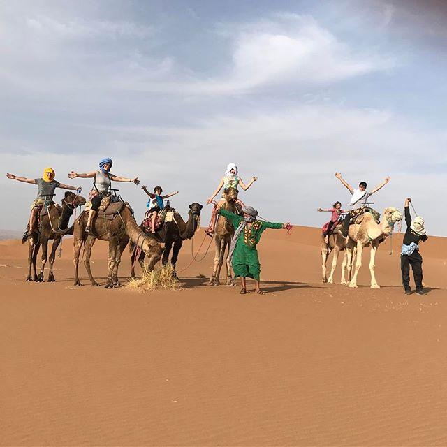 Tour de dromadaires (étrangement ça file moins la gerbe que le 4/4 qui suit la piste du Dakar) #désertmarocain #ciloubidouilleauMaroc #chegaga