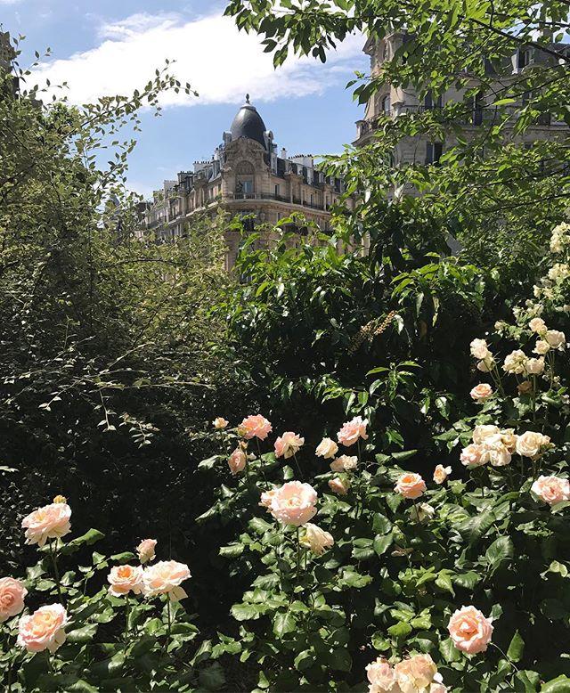 La coulée verte, fleurie, verdoyante ! J'adore être une touriste à Paris :)