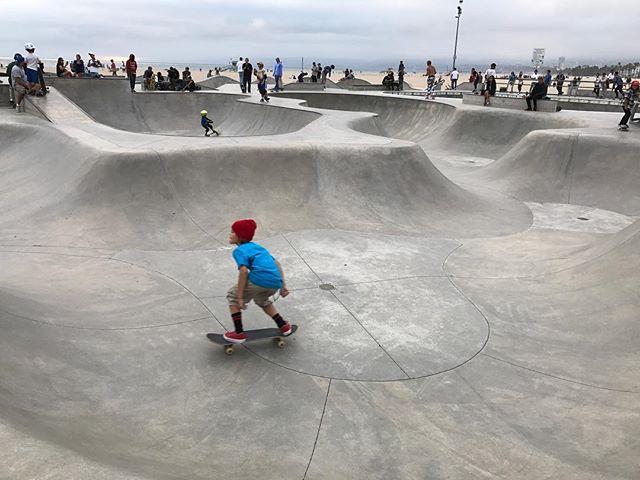 Le skate parc de Venice, rempli de talentueux skateurs de tout âge ! #venice #ciloubidouilleinUSA #losangeles