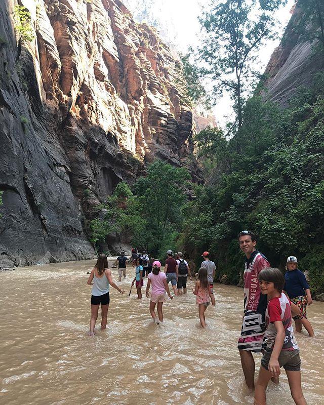 Randonnée les pieds dans l'eau ! Il y a du courant et on ne voit pas où on met ses pieds. Plutôt rigolo et parfois glissant ! #zionpark #zion #ciloubidouilleinUSA