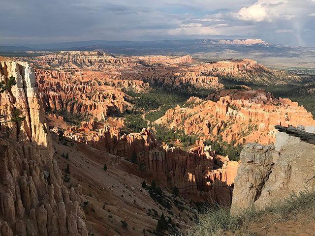 Bryce Canyon est constitué de Hoodoo, nom anglais pour les cheminées de fées (lui-même nom de ces colonnes de roches qui constituent Bryce Canyon) #brycecanyon #brycecanyonnationalpark #ciloubidouilleinUSA