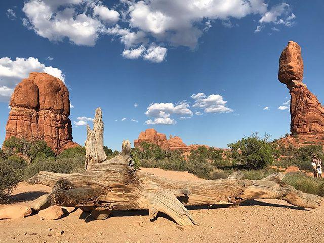 Dans le parc de Arches, dont le nom est issu de roches trouées (pas comme sur la photo ^^) #arches #ciloubidouilleinUSA