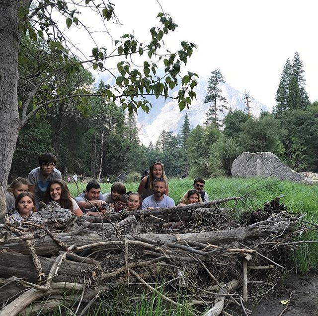 Famille de castors #yosemite #yosemitepark #ciloubidouilleinUSA