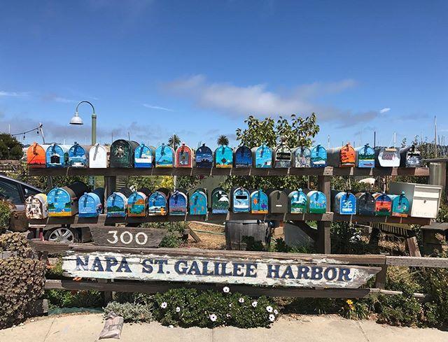 Les jolies boites aux lettres à Sausalito #sanfrancisco #sausalito #ciloubidouilleinUSA