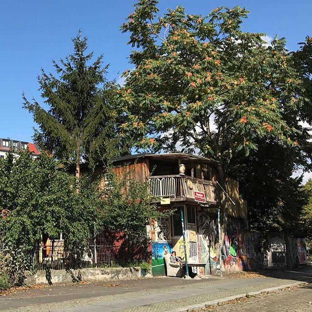 La cabane turque entre deux arbres, construite sur un minus coin de jardin de l'est qui s'est retrouvé coincé dans le territoire de l'ouest pour une sombre histoire de mur. L'histoire d'un turc qui a construit son bout de paradis avec de la récup. A la chûte du mur, un prêtre de l'église d'à-côté s'est battu pour qu'il récupère le terrain. #berlin #ciloubidouilleinberlin