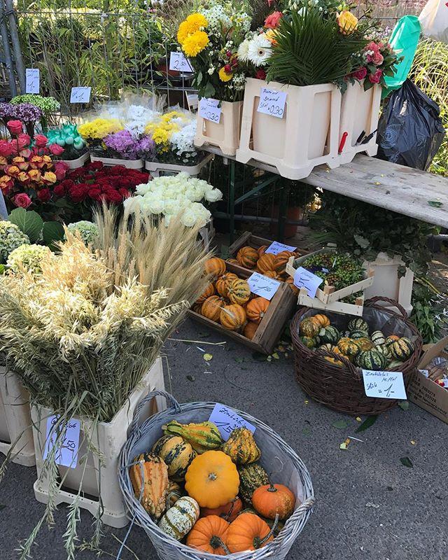 De tous les marchés, les marchés aux fleurs sont mes préférés #mauerpark #berlin #ciloubidouilleinberlin