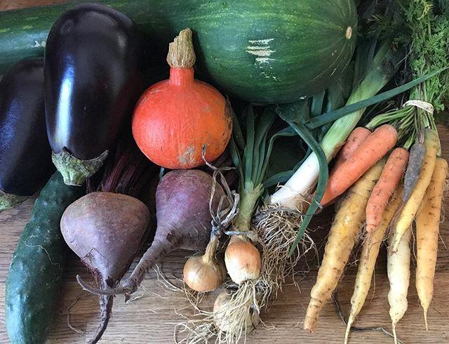 Couleurs d'automne... vous cuisinez quoi en ce moment ?