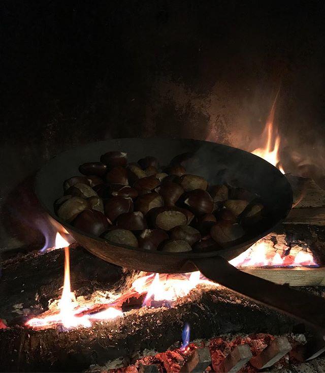 Chataignes grillées du samedi soir : la joie !