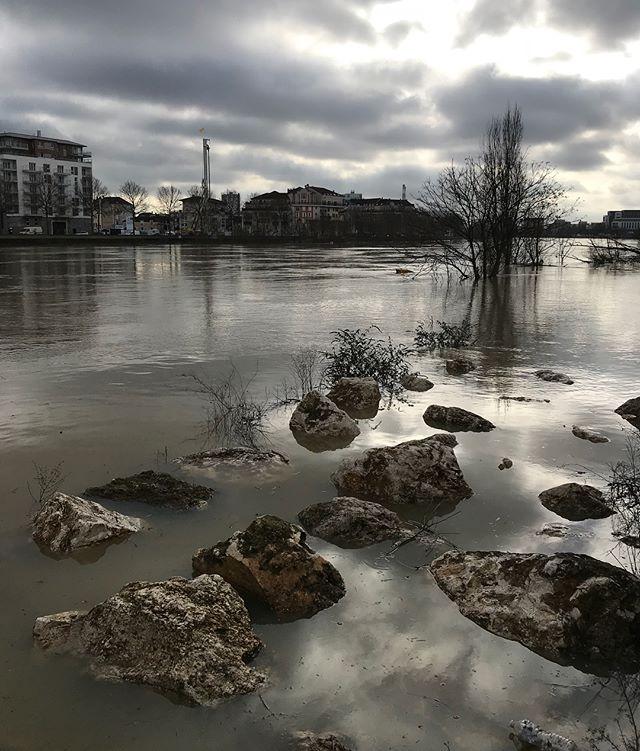 Je suis rentrée à pied d'un rdv parisien. J'en ai profité pour faire des photos de la Seine qui déborde sur les chemins que je connais. #paris #seine #inondation
