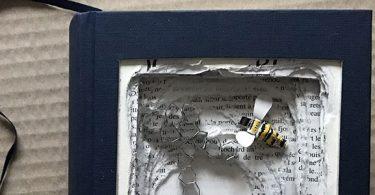 livre sculpté