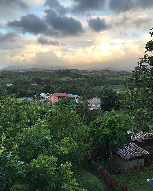 Je suis logée chez mon parrain, au coeur de l'île, dans les terres. #martinique #cilouenmartinique