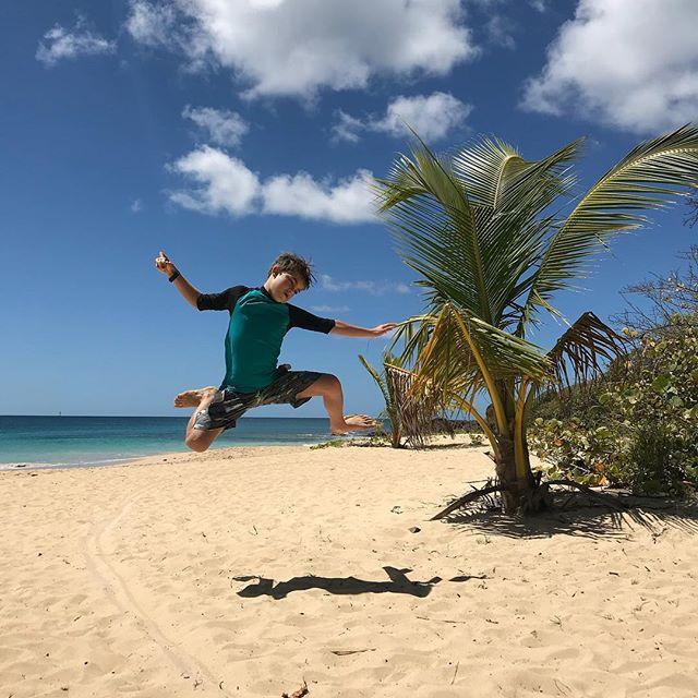 Peut-être le dernier jour de plage (on prend l'avion demain soir). On est retournés aux Salines. Et c'est toujours aussi beau qu'une carte postale :) #cilouenmartinique #lessalines #martinique
