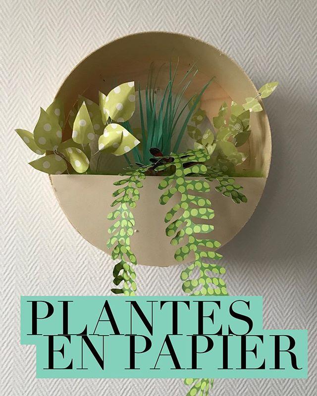 Le tuto de cette déco murale est sur le blog. Ca parle de plantes en papier et des 16 ans de Maëlle :). #paperart #paperplants #papergarden #papercraft #ciloubidouille