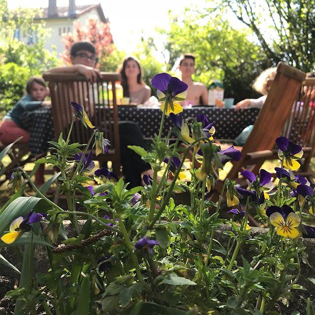 Ce soleil, ce jardin, ces enfants... la joie du quotidien :)