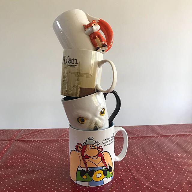 Mes tasses de thé préférées sont celles qui peuvent accueuilir beaucoup d'eau. Celle d'obélix permet de mettre les trois quarts d'un litre ! Je ne vous dis pas comment je l'adore ! (Elle vient du parc, chais pas si on peut l'acheter ailleurs). Et vous ? Team petite ou grande tasse ? #cupoftea #bigmug #mugcollector