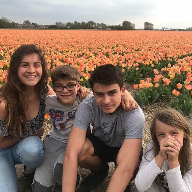 On va passer un WE fleuri en Hollande :) #hollande #tulipe #cilouenhollande #netherlands