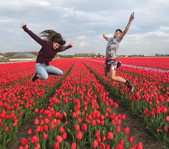 Préparez-vous à manger de la tulipe !! On est en Hollande pour le We ;). C'est beau, mais c'est beau... #cilouenhollande #hollande #tulipes #jumpshot #netherlands