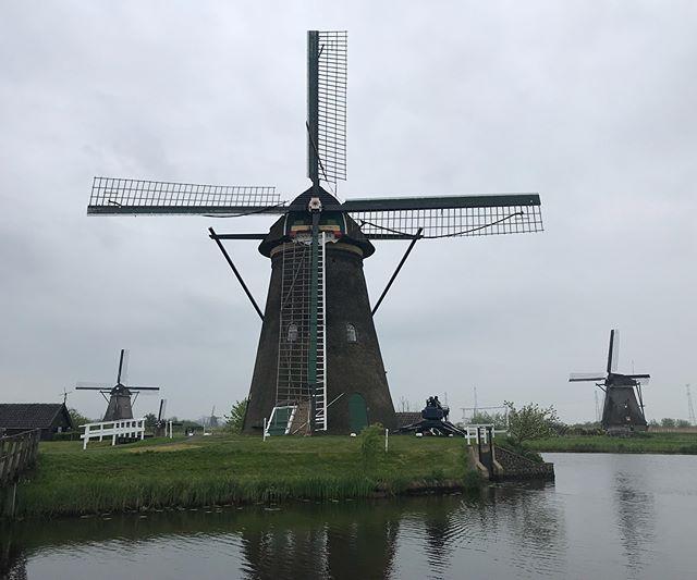 Les moulins de Kinderdijk, classés au patrimoine mondial de l'Unesco, sont parmi les monuments les plus visités de Hollande. #hollande #kinderdijk  #mill #moulins #netherlands