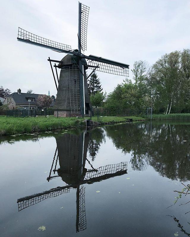 Moulin croisé au détour de notre balade en vélo #hollande #cilouenhollande #mill #moulin