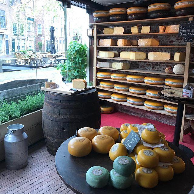 Bonjour, je m'appelle Cécile et je ne sais pas si je vais arriver à sortir de cette fromagerie hollandaise. Si vous ne me voyez pas les prochains jours, cherchez-moi à la fromagerie Bon de Leiden ! #fromagerie #fromagehollandais #hollande #gouda #goudacheese