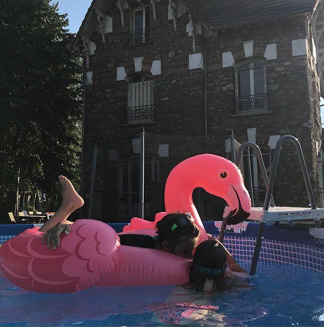 Finalement, en animal de compagnie, on a suivi la tendance 2016, on a pris un flamant rose... #lebonheurestenbanlieue #piscine