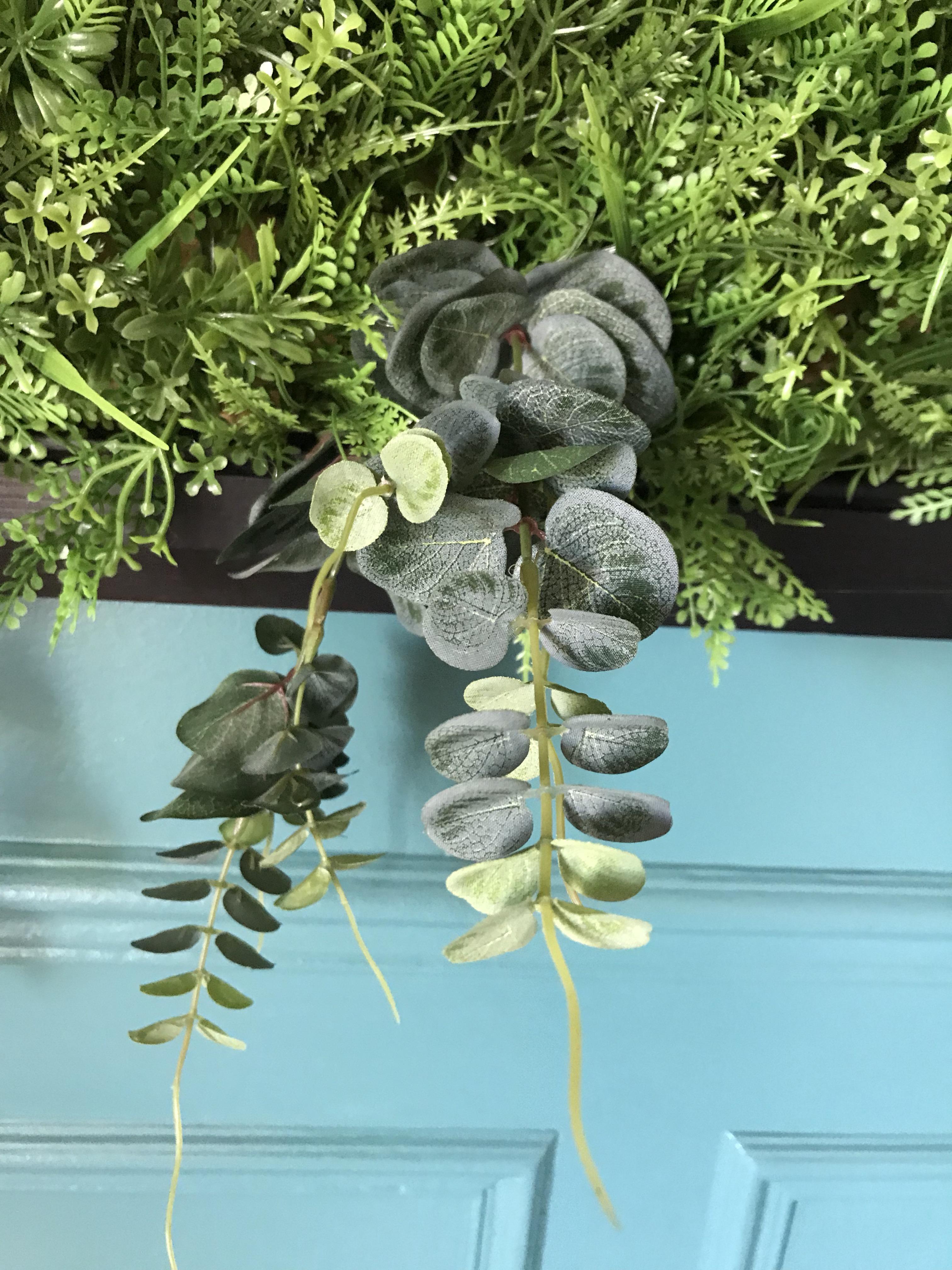 tableau végétal - pilea