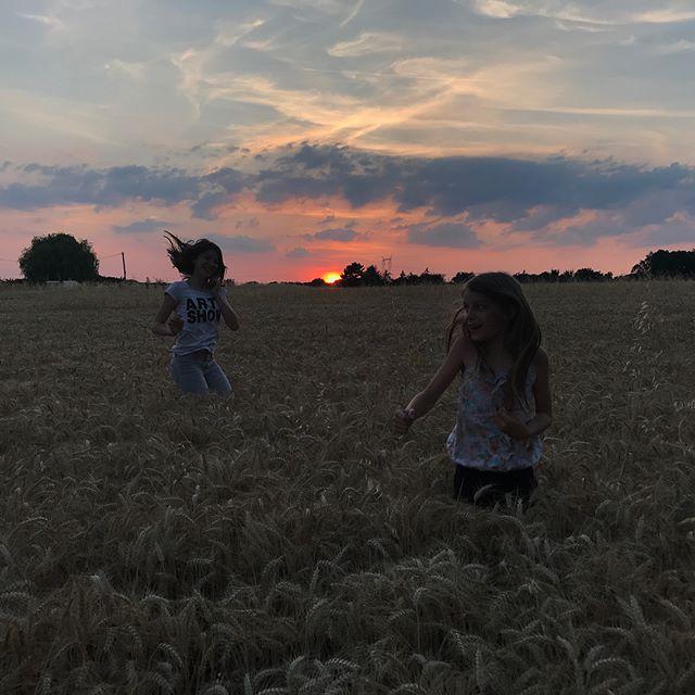 Deux blondinettes, un champ de blés mûrs et un soleil rouge... Les jolies soirées de l'été :) #nofilter #countryside #campagne