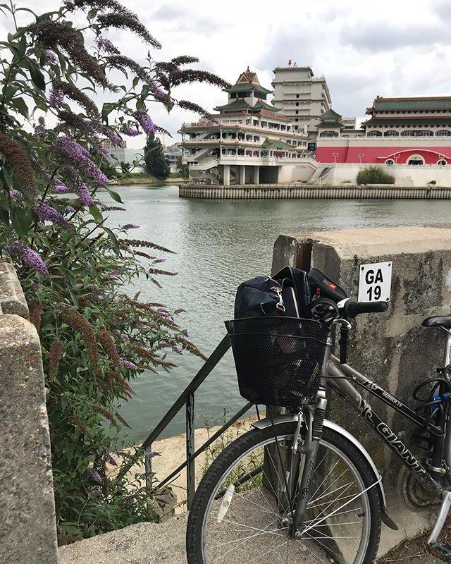 Je me suis arrêtée pique-niquer le long de la Seine en revenant de mon rdv avec ma couveuse d'entreprise. Besoin d'une pause pour calmer mon petit coeur qui déconne en ce moment. Pis besoin de regarder tranquillement ce qui me plait quand je pédale. A vélo, on voit des tas de choses qu'on laisse de côté en voiture. Mais c'est encore à pied qu'on est le mieux pour admirer les détails... J'ai même croisé trois bestioles mignonnes (vous pouvez les voir en storie), que je soupçonne d'être des ragondins (moins mignon niveau microbes ^^). Et vous ? Vous faites des pauses parfois dans vos vies bien réglées ? #paris #seine #huatianrestaurant #vélo #slowlife