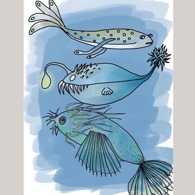 Le dessin de l'avion. J'ai commencé par dessiner le poisson du haut puis celui du milieu et enfin celui du bas. C'est rigolo de constater qu'au cours d'une même séance de dessin, tu prends confiance et tu progresses :). Comme quoi, la pratique, il n'y a rien de tel :). #ciloudrawings #ciloudrawings #drawing #fish #drawingfish