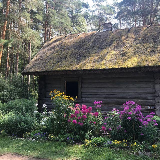Nous avons passé l'aprem dans un musée de plein air, un immense parc reproduisant les maisons lettones des siècles passées : école, églises, moulins, habitations... Une belle balade à l'ombre (on la recherche) dans un paysage moyenâgeux. #riga #lettonie #latviatravel #cilouinlettonie #latvia
