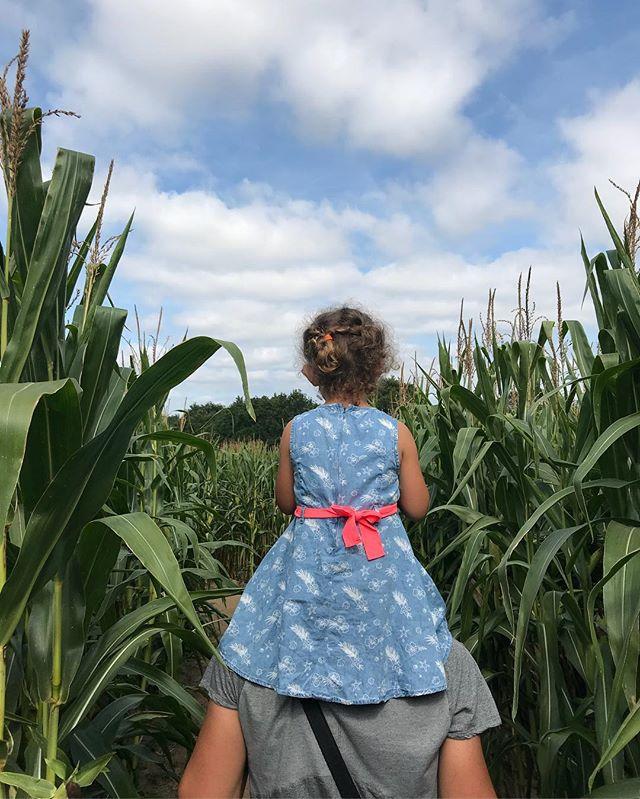 Deux heures dans le labyrinthe de maïs, pas tant à trouver notre chemin qu'à rigoler aux jeux, à se courser ou se faire peur dans les rangées du géant vert ! Super moment :). #labyrinthe #maïs #popcornlabyrinthe