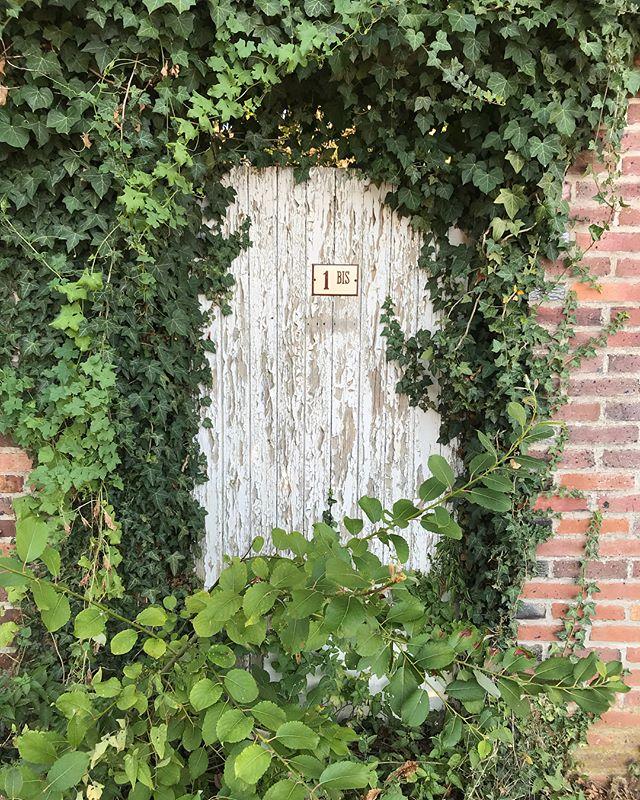 Comme des milliers de personnes, j'ai une passion pour les portes et les fenêtres. Je ne sais pas ce que ça raconte de moi. Peut-être juste mon envie de regarder toutes les vies possibles et d'autres imaginaires. #porte #fenêtre #bourgogne