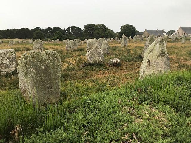 Les alignements megalithiques de Carnac sous la pluie :). On associe ces grosses pierres aux gaulois mais elles sont là depuis plus de 5000 ans. Asterix n'était pas né (c'était l'époque néolithique, les hommes découvraient l'agriculture) ! Des tas de légendes entourent ces pierres levées mais la réalité c'est que personne ne sait ce qu'elles fichent là et encore moins pourquoi elles sont alignées. Le mystère sied bien à la Bretagne :) #carnac#breizh #monolithic #pierrelevee