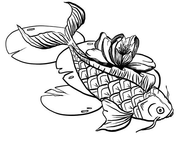 Une commande pour un futur tatouage. Ma cliente adorée se pose des questions. Couleur or not couleur ? Vous en dites quoi ? #koitattoo #carpekoi #koi #tatouage #dessin #illustration