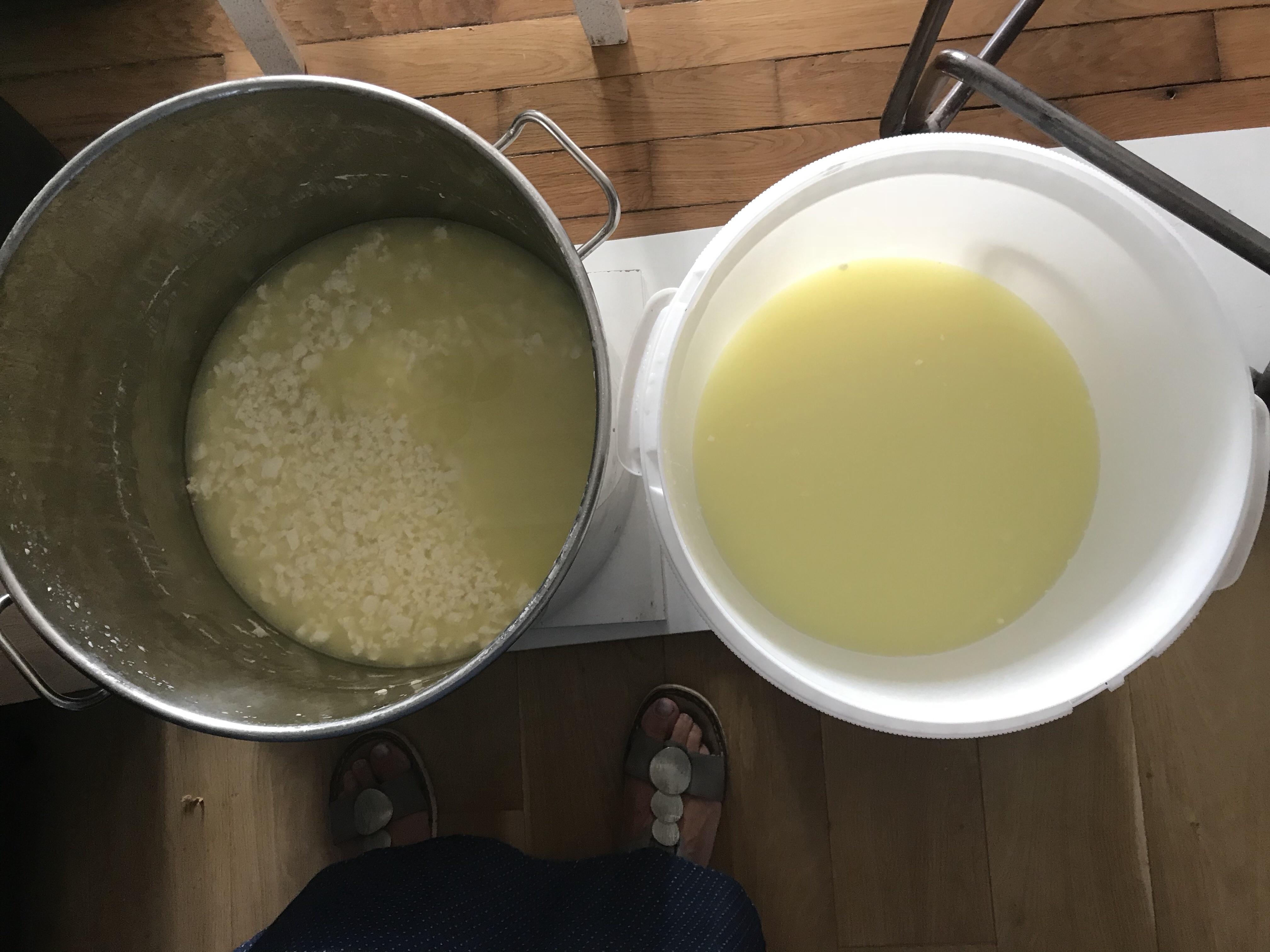 faire son fromage - Petit lait