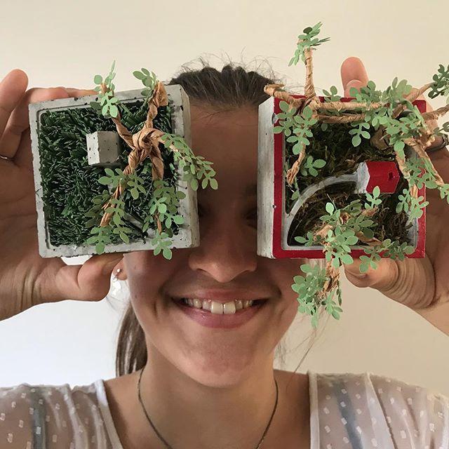 Jeudi soir, je vais faire mon premier atelier professionnel :). On réalisera des mini jardins de papier (et de béton). Je suis hyper heureuse de me lancer via @les_ateliers_de_la_renarde_ ! Je vous prépare aussi des cartes cadeaux (je crois avoir bien entendu votre message venu d'un peu partout ^^). Je mets ça en ligne bientôt. Je suis aussi sur la rédaction de l'anniversaire des 8 ans de ma dernière, je n'ai que trois mois de retard. Une paille. Rdv ce soir sur ciloubidouille.com je pense :). Voilà. Plein de bisous à vous tous :). . #ateliercreatif #atelierparis #lesateliersdelarenarde #paperart #ciloubidouille #beton #paperplants