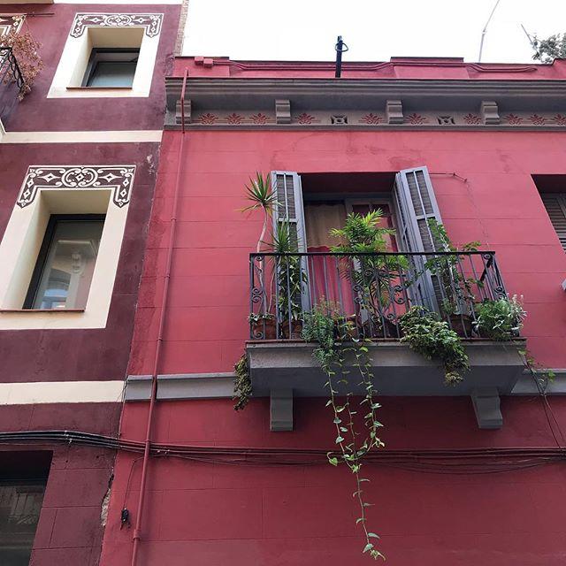 Barcelone, sous le soleil d'octobre. Quelle jolie ville, agréable à arpenter. L'ombre des ruelles, la douce chaleur et le bleu du ciel. J'adore. #barcelona #barcelone