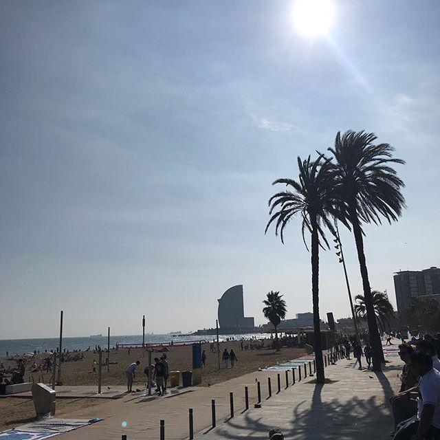 Cartes postales de Barcelone. Je vous envoie un peu de la mer dont on peut oublier la présence parfois dans cette ville. Sentez son vent puissant qui fait voler le linge... Prenez aussi des murs colorés, de la verdure partout, avec des balcons qui n'ont rien à envier aux urban jungles de la blogosphère. Je me garde les câlins des miens, qui sont finalement le but de beaucoup de mes voyages :)