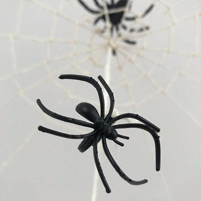 J'ai une araignée au plafond. Même deux. Ou 100 plutôt. Bref, j'ai ouvert ma porte à Halloween et il est entré, heureux de tout ce noir poilu, de tous ces monstres rigolards et autres citrouilles aux sourires orthopédiques ! #halloweeniscoming #spider #halloween